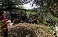 La fauna a MónNatura Pirineus