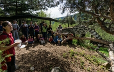 La fauna a M�nNatura Pirineus
