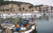Pesca del sonso a Arenys de Mar