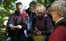 Identificant bolets al Montseny