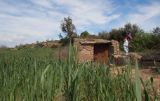 Parada ornitològica als patamolls de Granollers de Segarra