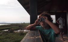 Observació d'ocells als amagatalls del Parc Natural del Delta de l'Ebre