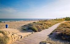 Cal destacar el gran valor natural d'aquesta platja urbana