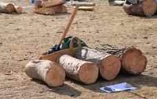 El Concurs d'Estelladors de Torrelles de Llobregat