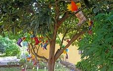 Una de les instal·lacions del festival Sant Joan les Flors