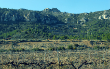 Selmella i Saborella, hist�ries de castells a l'Alt Camp