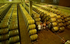 Interior del Celler de Cap�anes