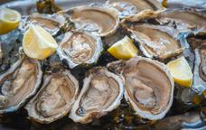 Degustació d'ostres al mig del mar
