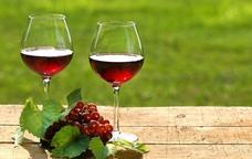 Vins i ra�m