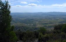 Un tomb per Mediona i la muntanya del Marquès