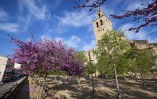 Els jardins del Monestir de Sant Cugat