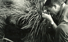 Sabater Pi va dedicar la seva vida a l'estudi dels primats