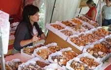 L'edici� del 2011 del Mercat del Bolet de Cal Rosal