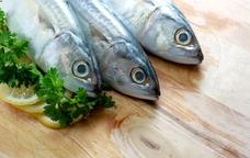 El cicle vol donar a conèixer les possibilitats gastronòmiques dels peixos menys coneguts