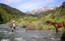 Pescant truites i trobant la calma interior