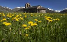 Seguint el rastre dels animals al Pirineu ribagorçà
