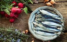 Jornades gastronòmiques del peix blau de Blanes