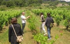 Les vinyes de Sitges