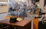 Activitats d'estiu al Museu del Suro de Palafrugell