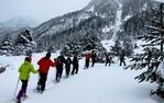 Excursió amb raquetes de neu per Aigüestortes