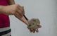 Volums inesperats a la Fundació Joan Miró