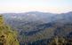 La Serra de Collserola vista des del Puig Madrona en direcció al Tibidabo