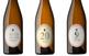 Enotast amb vins de Raventós d'Alella