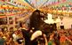 Festes de Sant Bartomeu de Ferreries