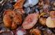 Jornades Gastron�miques del Bolet de l'Alta Ribagor�a