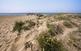 Descobreix les dunes de les platges de...