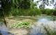 Visites a la llacuna del Samaruc