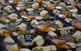 Mostra de formatges artesans de Catalunya i Formatjazz
