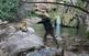 Fent d'exploradors a la vall del riu Glorieta