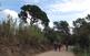 Un tastet de Collserola: del monestir de Sant Cugat a Can Borrell