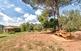 Un magnífic parc forestal a la Palma de...