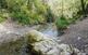 Ruta a peu per l'únic curs d'aigua permanent de Collserola