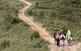 La ruta del Cister passa per l'Alt Camp, la Conca del Barberà i l'Alt Urgell