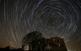 Nits d'Estels a l'Observatori de les Gavarres