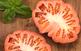 Jornades gastronòmiques del tomàquet del...