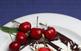Jornades gastronòmiques de les cireres