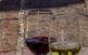 Tast de vins a l'Enotast d'Alella
