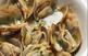 Jornades gastron�miques del Fesol del Ganxet...