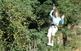 Circuits d'aventura als arbres a La Selva de l'Aventura