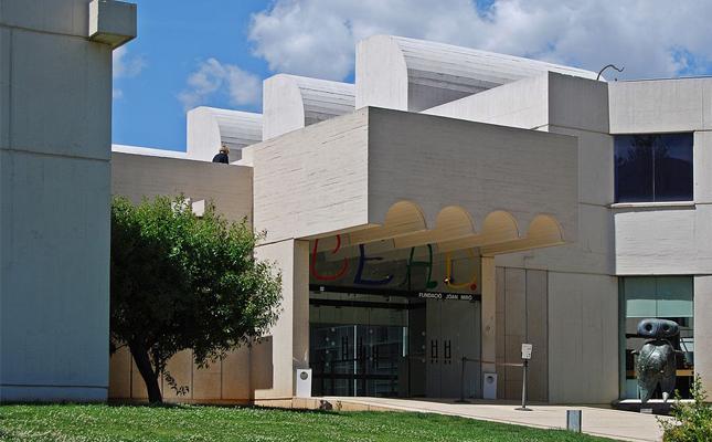 Quin arbre trobem a la terrassa inferior de la Fundació Miró?