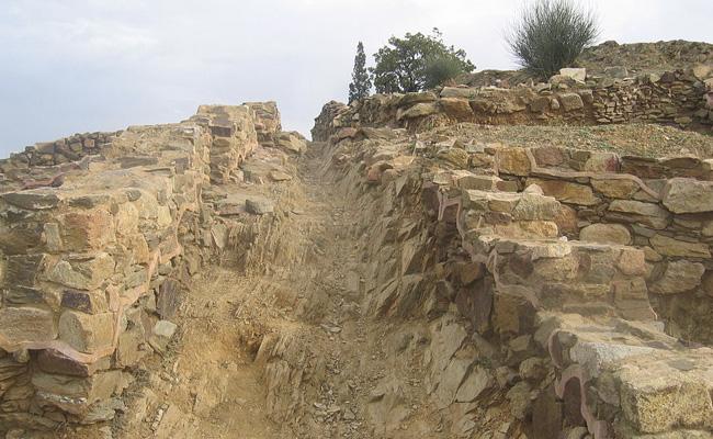 El poblat ibèric del Puig Castellar (Santa Coloma de Gramenet) es dedicava principalment a?